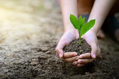 Bedeutung Nachhaltigkeit